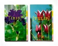 http://helenesilverman.net/files/gimgs/th-5_5_flowers1.jpg