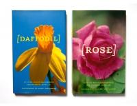 http://helenesilverman.net/files/gimgs/th-5_5_flowers2.jpg